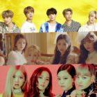 Se revela el ranking de reputación de marca de grupos ídolos del mes de noviembre