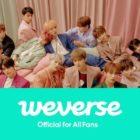 Big Hit y Pledis anuncian el lanzamiento de la comunidad de fans de SEVENTEEN en Weverse