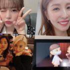 Sunny de Girls' Generation recibe un saludo especial de cumpleaños de su ídolo BoA + Tiffany celebra con fotos de ellas jugando Animal Crossing juntas