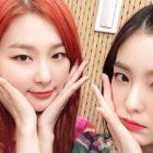 Irene y Seulgi de Red Velvet hablan del apoyo que han recibido de sus compañeras y Minho de SHINee