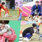 """Los ídolos y sus perros se enfrentan a una carrera de obstáculos en las vistas previas de """"2020 Idol Star Dog-Agility Championships – Chuseok Special"""""""