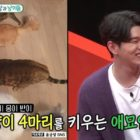 Yoon Kyun Sang habla sobre vivir solo, porqué decidió criar gatos y más