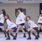 """Heechul de Super Junior se une a Brave Girls como el quinto miembro para una actuación en """"Ask Us Anything"""""""